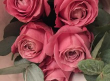 Hoa hong sinh nhat_112018