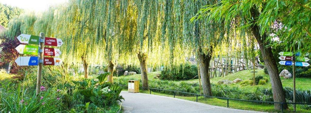 Parc Beauval
